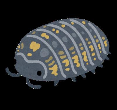 bug_dangomushi_mesu